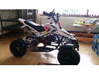 50cc mini quiad