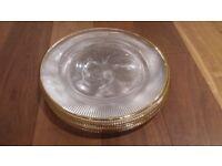 Big transparent glass plates (8)