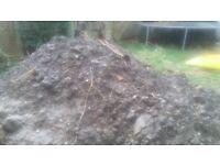 Soil free to collector. mountain of soil in back garden. Easy access