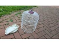 Small cage no tray