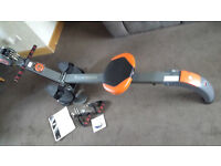 Rower and Gym BR 3010
