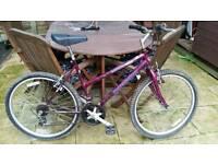 Ladies/girls Mountain Bike, Cheap £45