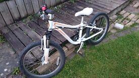 Specialized Hotrock Mountain bike, 20 inch wheels