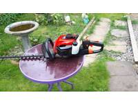 Petrol hedge trimmer s