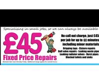 **£45**PLUMBING CHEAP PRICE/LEAKS/TAPS/BOILERS/DRAINS/BATHROOM FIT/KITCHEN FIT/ALL AREAS/O2089931OOO