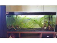 4ft 200L fish tank, stand, filter, heater, lighting etc.