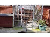 Dog run pen cage 6ft x 8ft x 6ft plus large kennal
