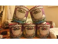 Hatchimals *EXCLUSIVE* DELIVERED BE ME WITHIN LONDON OR YOU CAN COLLECT...