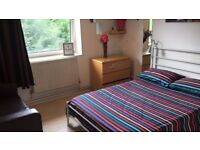 ++Better than this? Sweet room in safe area ! Renting ASAP !