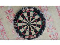 Winamu masters dartboard