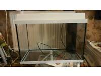 Fish tank comes with extras / cash or swaps