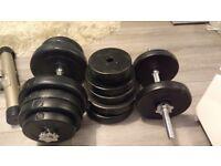 Adjustable dumbbells - 50kg each - We*R fitness