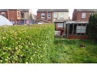Garden maintenance, garden clearance, hedges cut and removed, lawns cut, general garden maintenance.