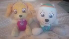 2 Paw Patrol plush teddies-Skye and Everest