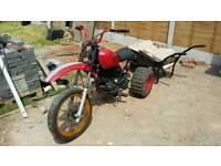 125cc project trike