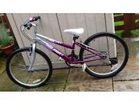Girls Raleigh bike 24 inch
