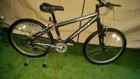 "UNISEX JUNIOR MOUNTAIN BIKE 24"" WHEELS. RIDGEBACK MX 24. LIGHT WEIGHT ALIMINUM FRAME"