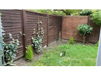 1 bed gff with garden next to canal nw1 for 2/3 bed