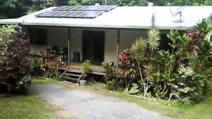 Cow Bay 4 Bedroom Home Rainforest Retreat Cow Bay Cairns Surrounds Preview