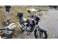Yamaha YBR250, Black, Immaculate, includes back box, heated grips, trickle charger, Only 1120 miles