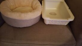 Lovely new cat bed and baby bea littet tray
