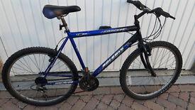 Mountain Bike: Gent Concept mountain bike £70