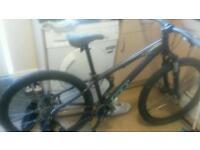 Gt bump bmx mountain bike