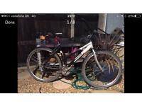 Orbea ladies hybrid bike