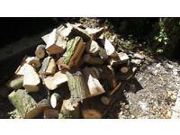 Oak Logs and Cut offs- Various Sizes