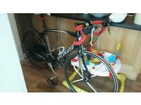 Specialized Allez road bike 52 inch frame