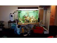 100cm long, 70cm high,40cm wide FISH TANK