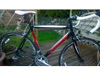 Vuelta road bike