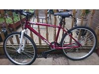 Apollo Udban mountain bike
