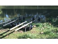 83bb9307bd6 Carp in Coventry, West Midlands | Stuff for Sale - Gumtree