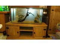 3feet costorm made fish tank