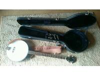 Ozark 5 string banjo with hard case (2012G)