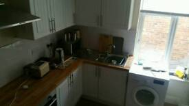 1 bed large city centre flat for rent 100pcw