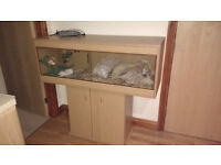 New vivarium + cabinet + everything you see in the picture