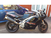 TRIUMPH T595,daytona, 17500 miles. mint! new tyres, scotoiler, just serviced 12m mot