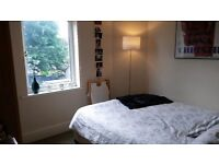 Double room in friendly spacious house