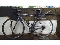 Specialized Allez Sport 2015 Road Bike