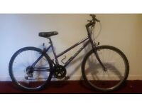 Ladies Universal Rapid Reactor Mountain Bike with Light's