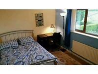 Double Room to rent Alveston /Thonbury
