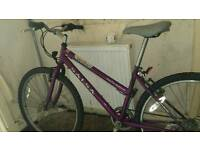 Saxon mountain bike