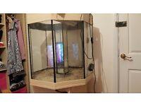 Large octogon fish tank