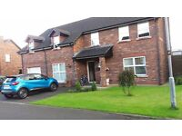 5 bedroom detached house cullybackey