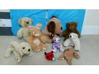 soft cuddly toys £2 the lot. Teddy bears. Bunny rabbit furby cat andrex dogs etc