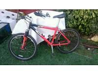 Mountain bike Kraken Carrera. Front discs and shock absorber