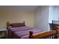 Nice single room in friendly house share in Colliers Wood/ Wimbledon