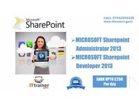 LEARN OFFICE 365 & MS Sharepoint Admin and work as an IT Consultant.